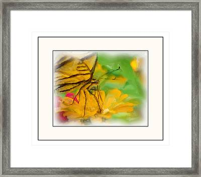 In The Garden Framed Print by Kelly Gibson