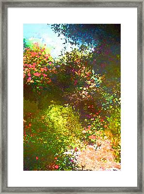 In The Garden Framed Print by Pamela Cooper