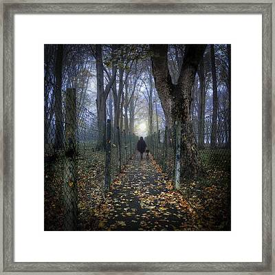 In The Lane Framed Print by Janet Meehan