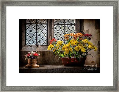 In The Light Framed Print by Adrian Evans