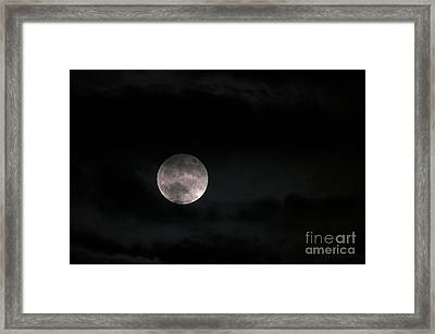In The Night Sky 5a Framed Print by Sharon Talson