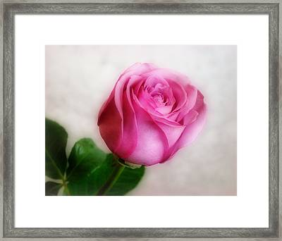 In The Pink Framed Print by Sandy Keeton