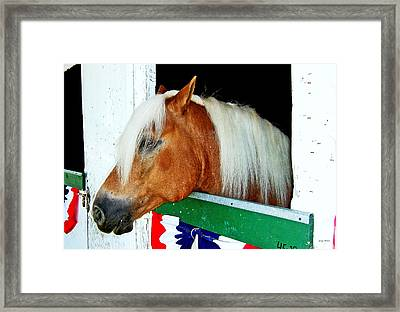 In The Stable 002 Framed Print by George Bostian