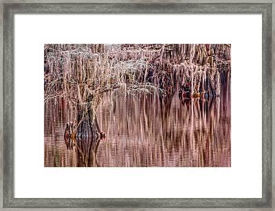 In The Swamp Framed Print by Matt Harvey