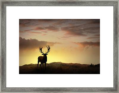 In The Warmth Of The Setting Sun Framed Print by Jennifer Woodward