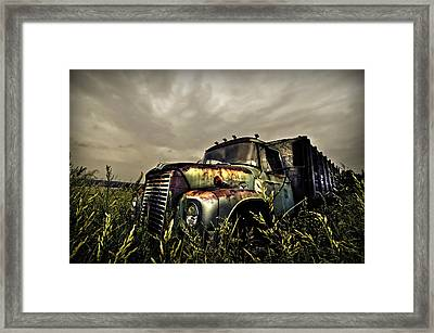 In The Weeds Framed Print by Stuart Gallagher
