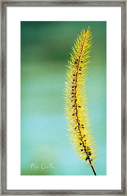 In Time Framed Print by Bob Orsillo