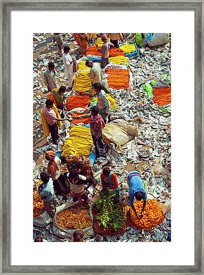 India, Kolkata, Mullik Ghat Flower Framed Print by Anthony Asael
