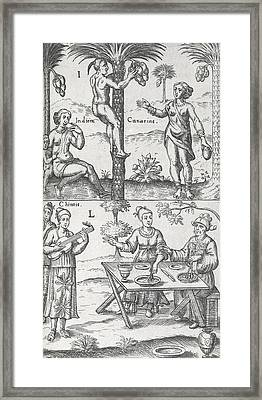 Indian And Chinese People, 17th Century Framed Print by Science Photo Library