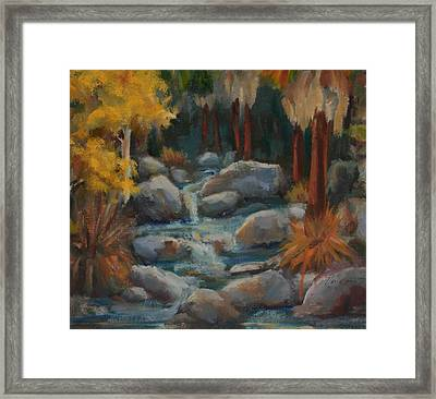 Indian Canyon Creek Framed Print by Maria Hunt