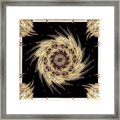 Indian Dance Framed Print by Michael Damiani
