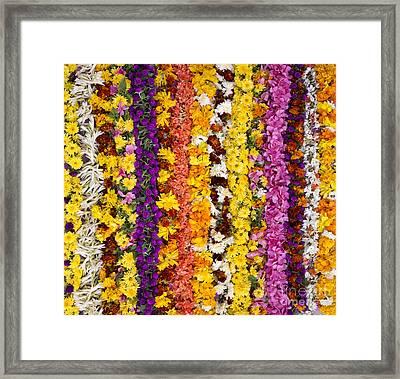 Indian Flower Garlands  Framed Print by Tim Gainey