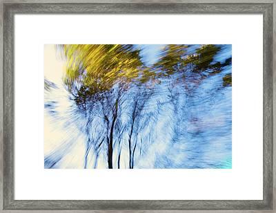 Autumn Wind Framed Print by Daniel Furon