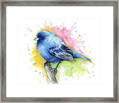 Indigo Bunting Blue Bird Watercolor Framed Print by Olga Shvartsur