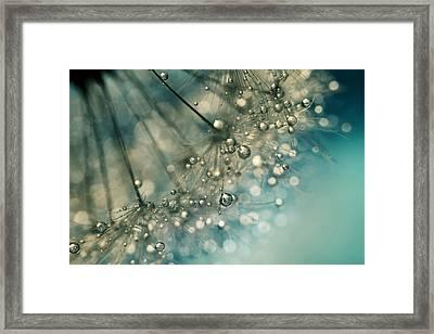 Indigo Sparkles Framed Print by Sharon Johnstone