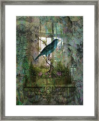Indoor Garden With Bird Framed Print by Sarah Vernon