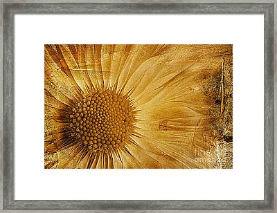 Infusion Framed Print by John Edwards