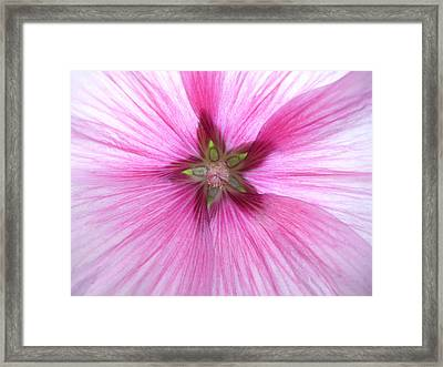 Inner Beauty Framed Print by Erica  Darknell