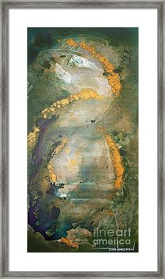 Inner Landscapes Framed Print by Todd Karleskein