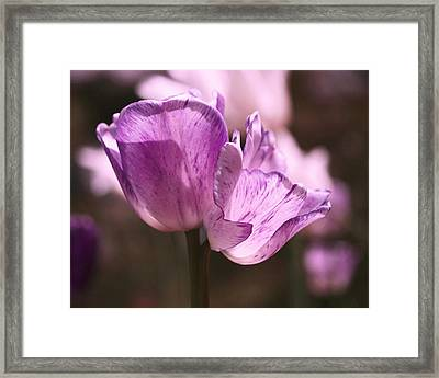 Inseparable Framed Print by Rona Black