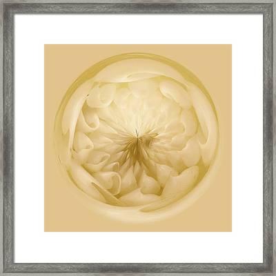 Inside A Sea Shell Orb Framed Print by Paulette Thomas