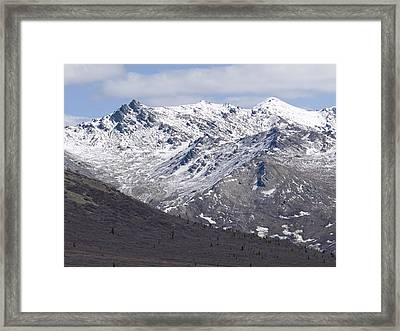 Inside Denali National Park 2 Framed Print by Tara Lynn