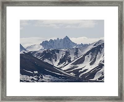 Inside Denali National Park Framed Print by Tara Lynn