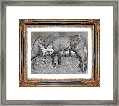 Inspirational Spirits Framed Print by Betsy C Knapp