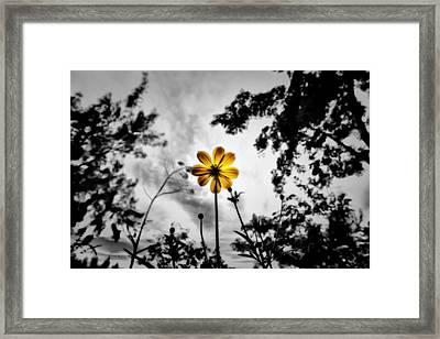 Inspire Framed Print by Suradej Chuephanich