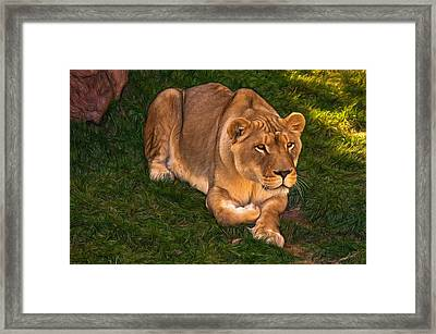 Intensity - Paint Framed Print by Steve Harrington