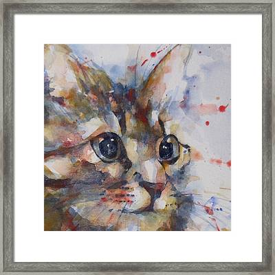 Intent Framed Print by Paul Lovering