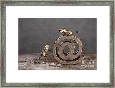 Internet Framed Print by Nailia Schwarz