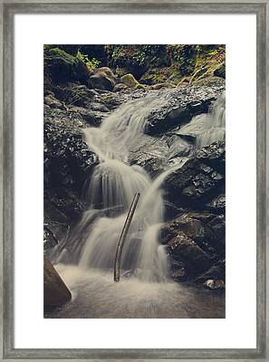 Interruptions Framed Print by Laurie Search
