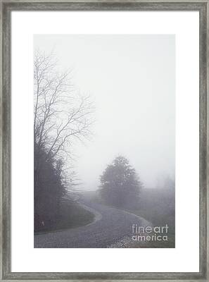 Into The Fog Framed Print by Kay Pickens