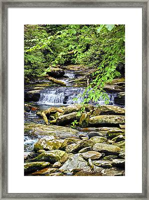 Into The Forest Framed Print by Christi Kraft
