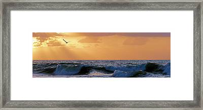 Into The Light Framed Print by JC Findley