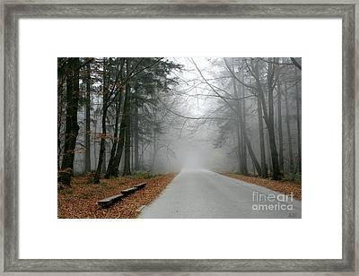 Into The Mist Framed Print by Joanna Cieslinska