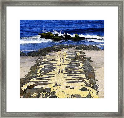 Into The Sea Framed Print by Colleen Kammerer