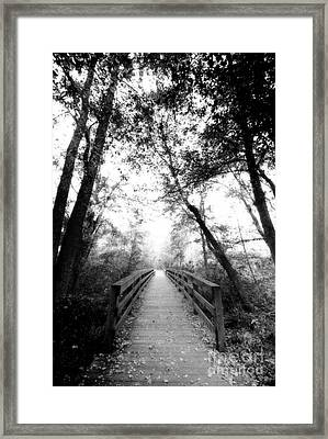 Into The Unknown Framed Print by Floyd Menezes