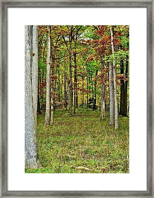 Into The Void Framed Print by Frozen in Time Fine Art Photography