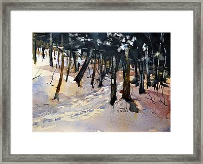 Into The Woods Framed Print by Spencer Meagher