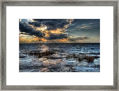 Invasion I - Outer Banks Framed Print by Dan Carmichael