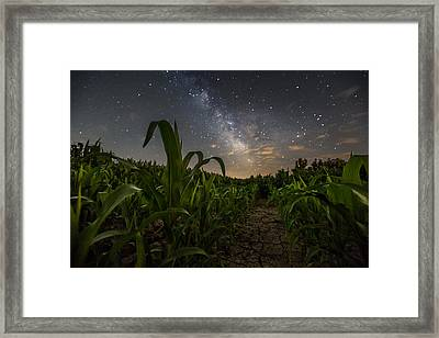 Iowa Corn Framed Print by Aaron J Groen