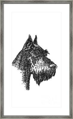 iPhone-Case-Schnauzer Framed Print by Gordon Punt