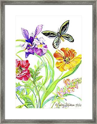 Iris And Queen Alexandra Butterfly Framed Print by Kimberly McSparran