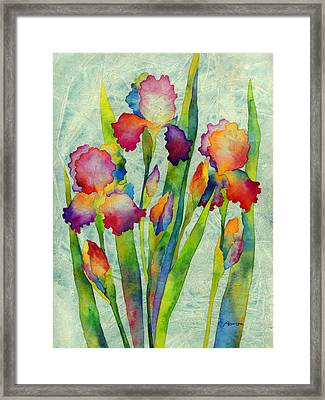 Iris Elegance On Green Framed Print by Hailey E Herrera