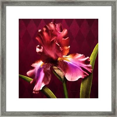 Iris I Framed Print by April Moen