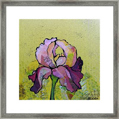 Iris IIi Framed Print by Shadia Zayed