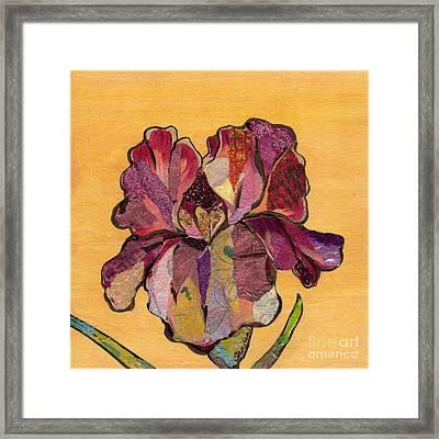 Iris Iv - Series II Framed Print by Shadia Zayed