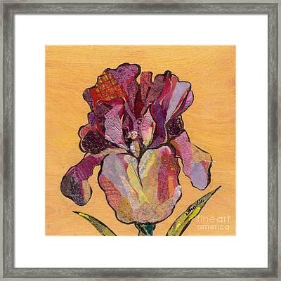 Iris V  - Series V Framed Print by Shadia Zayed